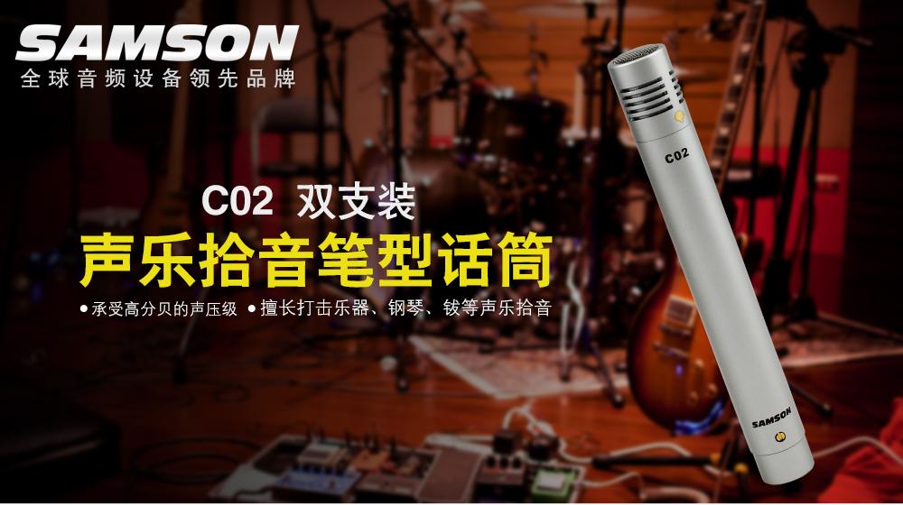 C02双只装 声乐拾音笔型话筒